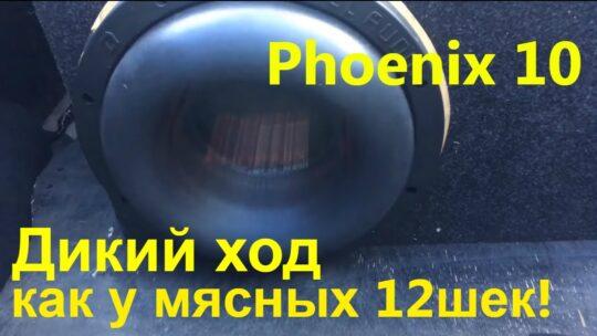 Компактный монстрик DL Audio Phoenix 10. Дал мощи и вывел на дикий ход. Сколько получится напилить?