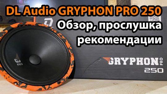 DL Audio Gryphon Pro 250. Обзор, прослушка, рекомендации