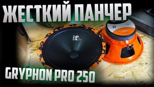 DL Audio Gryphon Pro 250. Обзор. Прослушка.